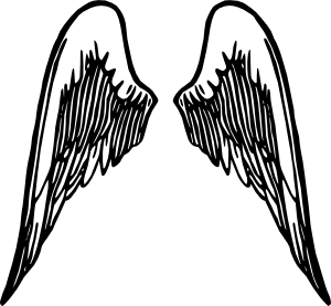 1195425090647322028PeterM_Angel_wings_5_svg_med